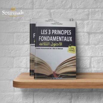 Les 3 principes fondamentaux (Format poche)